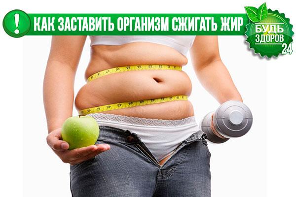 Лучший средства сжечь жир